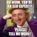 seo-expert