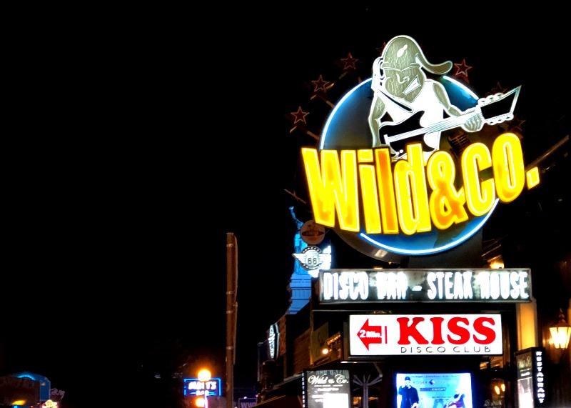 Wild & Co Albufeira